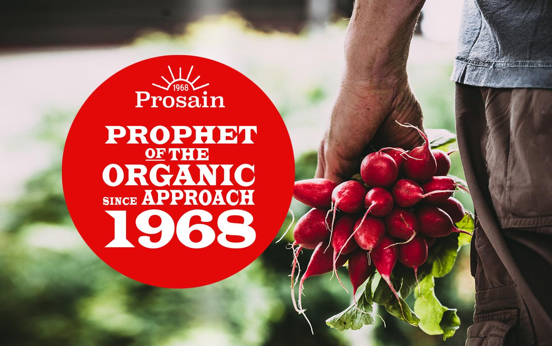 Prosain_Test_1